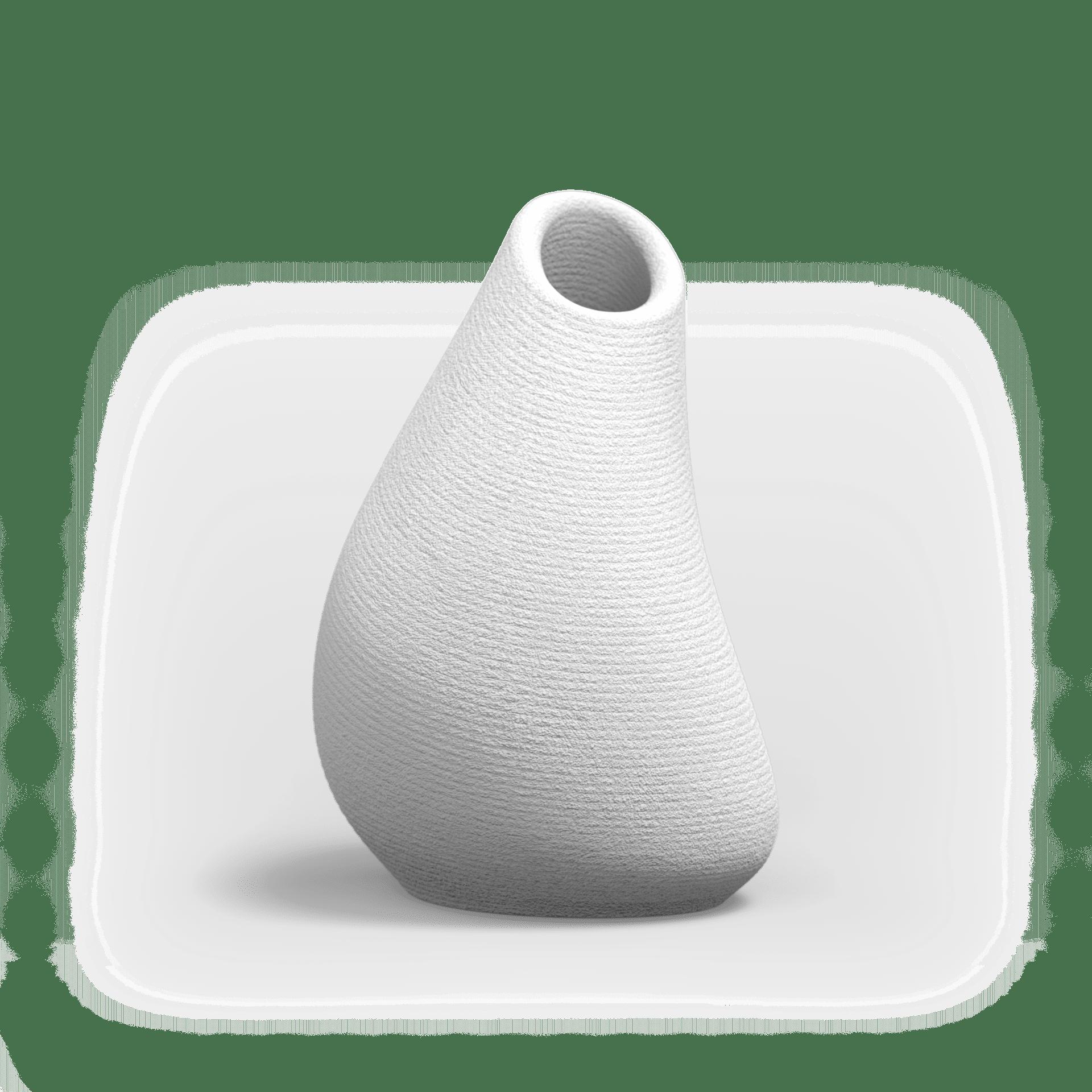 TROPN Vase PNG